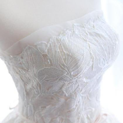 Strapless Lace Appliqués A-line We..